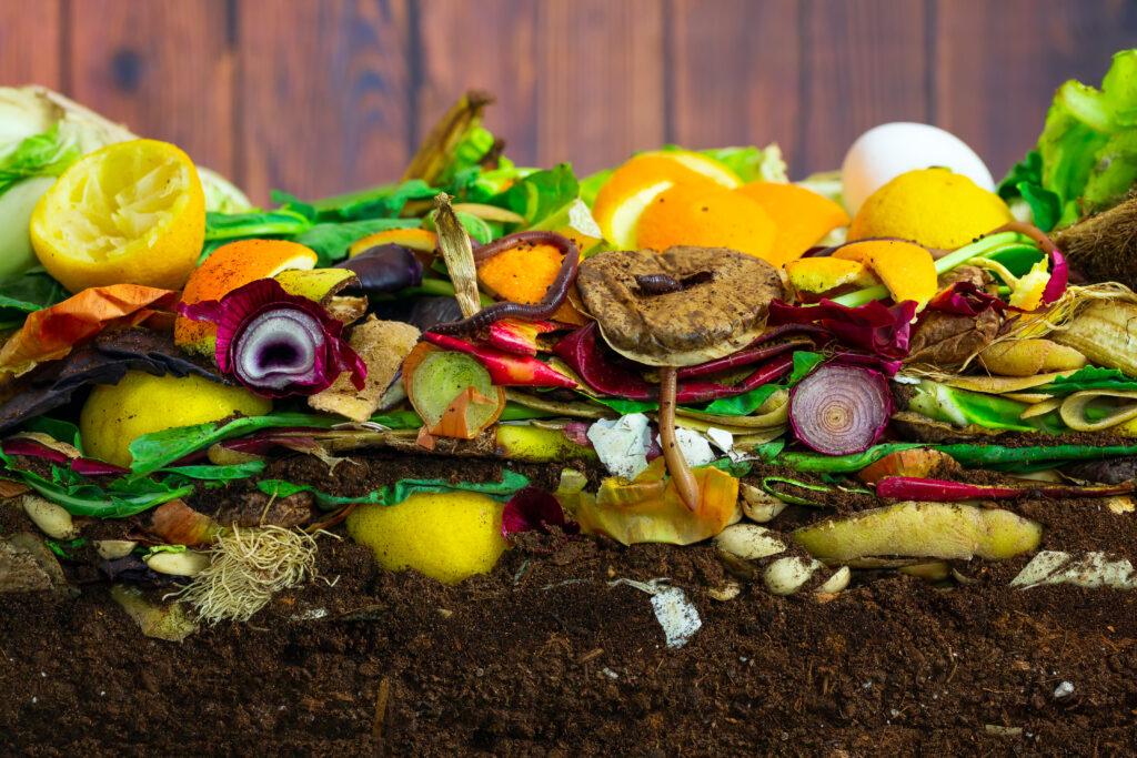 Compost risorsa preziosa